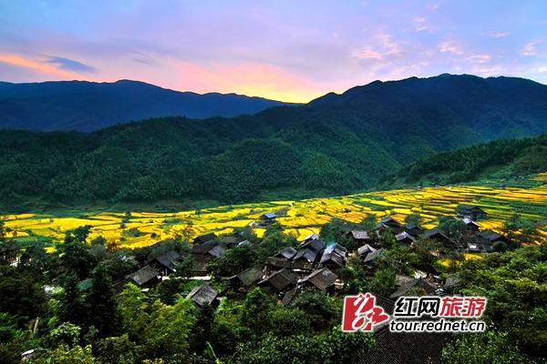 http://images.rednet.cn/articleimage/2018/05/09/162846880.jpg