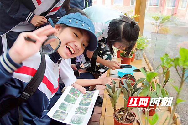 中南大学第二附属小学校长肖慧:别具慧眼的领路人
