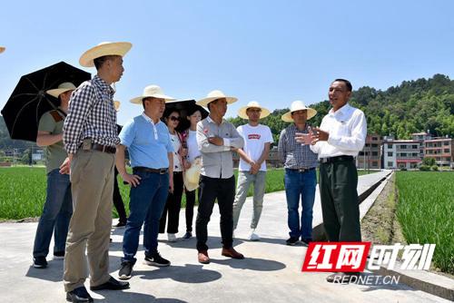 邵阳市民政局到隆回开展党员主题活动日活动