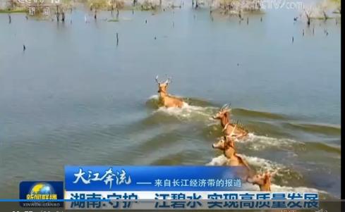 湖南:守护一江碧水 实现高质量发展