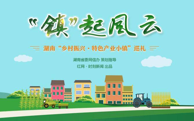 """专题:""""镇""""起风云――湖南""""乡村振兴・特色产业小镇""""巡礼"""