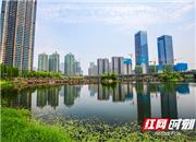 2018湘江金融发展峰会召开在即 一年来湖南金融中心有何新变化?