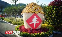 """永州首届""""中国农民丰收节""""现吸睛""""农""""元素"""
