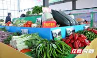 汉寿第三届蔬菜节开幕现场签约45.6亿元