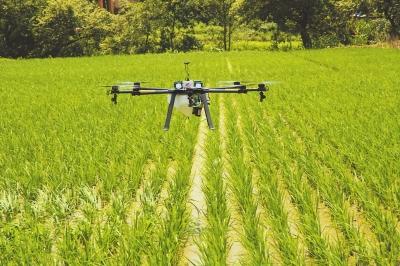 科技为粮食安全保驾护航