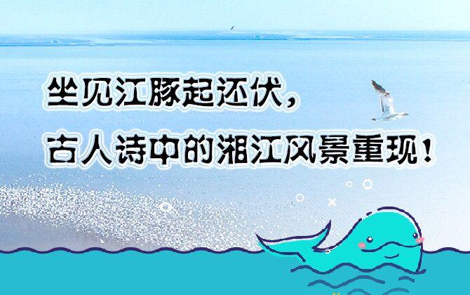 图解丨坐见江豚起还伏,古人诗中的湘江风景重现