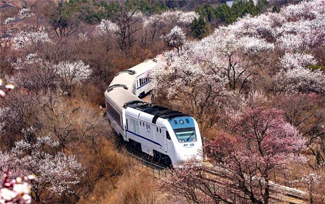 红图丨载着梦想开往春天的列车