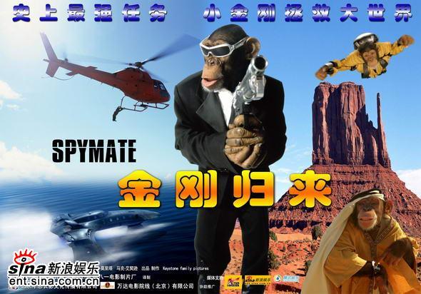 只是男主角都是一只大猩猩