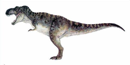霸王龙可谓是恐龙家族中的王者