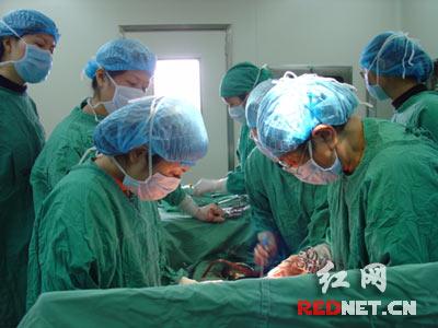 曹霞已经做了绝育手术的43岁的杨