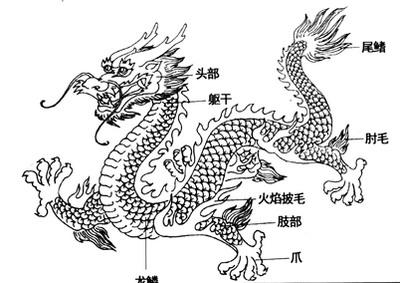 龙的画法铅笔画图片-中国龙文化解读图片