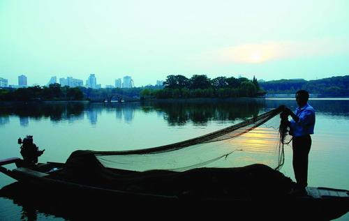 """""""今天凌晨,湖南烈士公园湖心岛秋岛南向水面,由28名专业捕捞人员和16"""