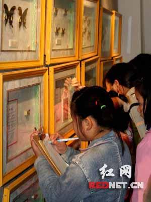 衡阳/(一名小朋友在大型珍稀昆虫展现场做笔记。)...