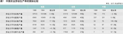 表1 中国农业劳动生产率的国际比较