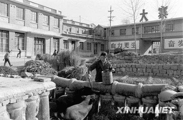 1983年初,大寨实行家庭联产承包责任制,开始了家庭副业。这是一名村民在村口喂猪。