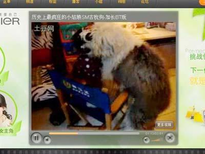 日本幼女的片子在哪�_男子自拍大狗猥亵幼女视频 引起网友公愤(图)