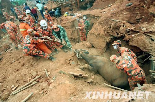 四川攀枝花地震已致32人死亡 官兵全力救灾 高清图片