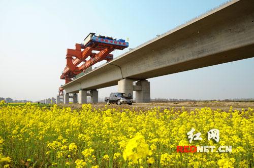 铁道湘军决战京沪高铁 建世界铁路第一长桥(图