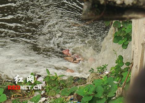 娄底涟水河一大桥惊现一具女尸
