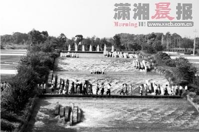 观摩人员行走在景观水系钢木结构的人行便桥上