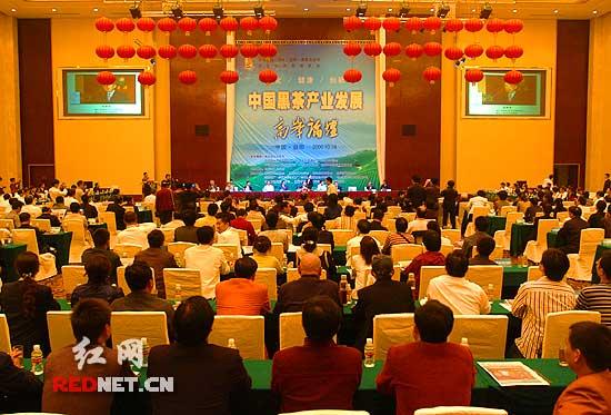 首届中国湖南黑茶文化节开幕式