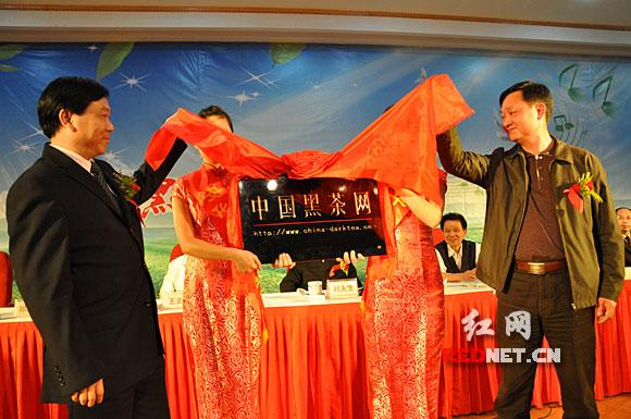 中国黑茶网长沙开通 安化黑茶进入网络营销时代
