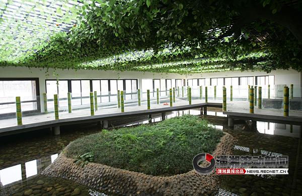 长沙动物园计划引进上百条鳄鱼,使之成为中南地区最大的鳄鱼专馆