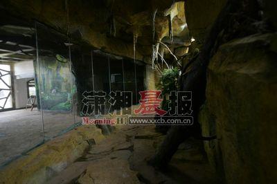斯茅庚)生态动物园大象馆往东