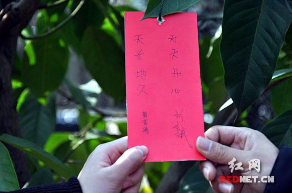 长沙情人节:情侣种下相思树