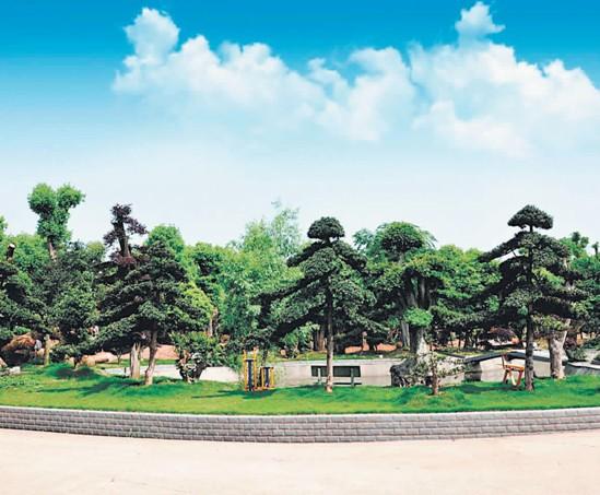 民生银行长沙花卉苗木行业合作社成立