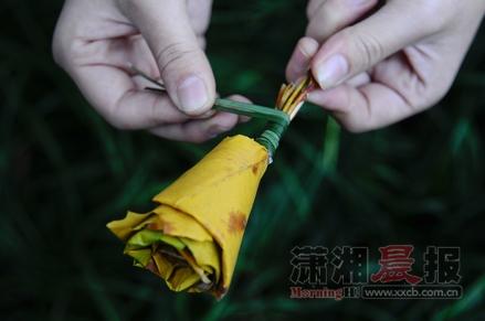 湖南省植物园梧桐叶折成玫瑰花 触动冬的浪漫