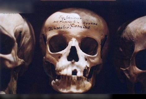 恐怖 博物馆/毛骨悚然!收藏畸形人遗体的最恐怖尸体博物馆