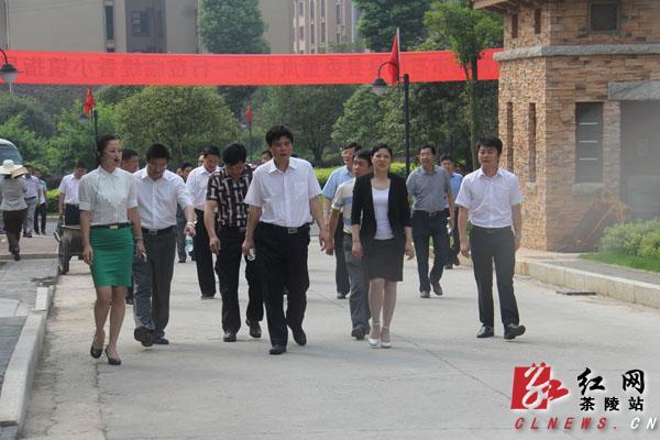石门县视频代表团来茶陵县考察狂党政吻图片