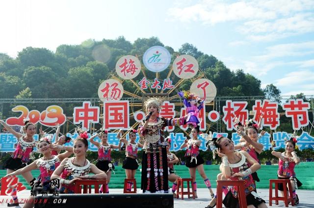 金大地2013·中国·靖州杨梅节开幕