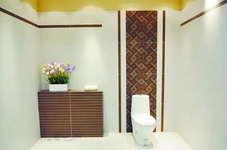 效果.   欧式洗手间效果图:好的花式瓷砖会给平庸的墙面画龙高清图片