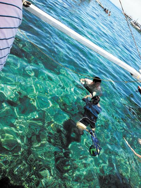 世界 珊瑚/浮潜于浅海,不但可看到珊瑚、海石花,还可看到五彩斑斓的海鱼...