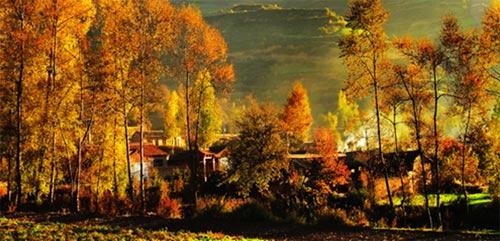 描寫秋天的句子景色