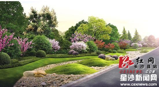 廖真怡)道路两边花开四季,低矮的地被灌木丛与亭亭玉立的行道乔木层级
