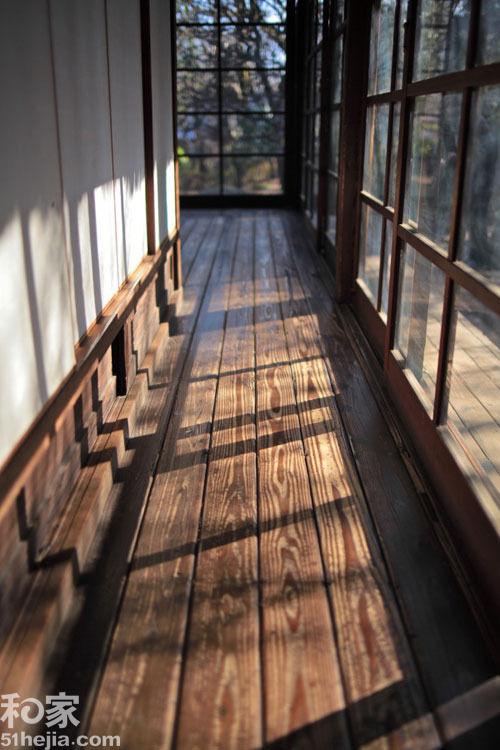 最形象木材硬度表 地板选材so