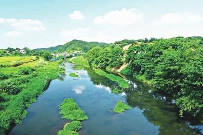 清清的河水清清的河水简笔画