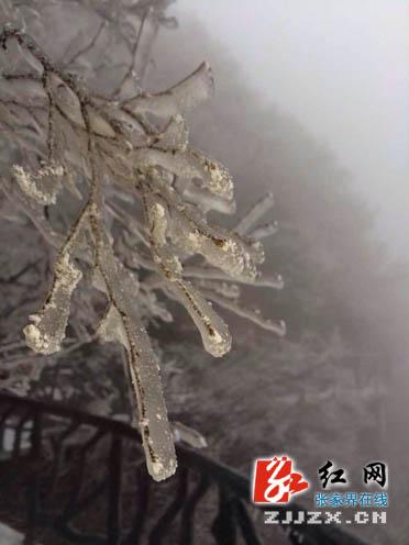 张家界迎来雨雪天气 降温幅度4℃左右