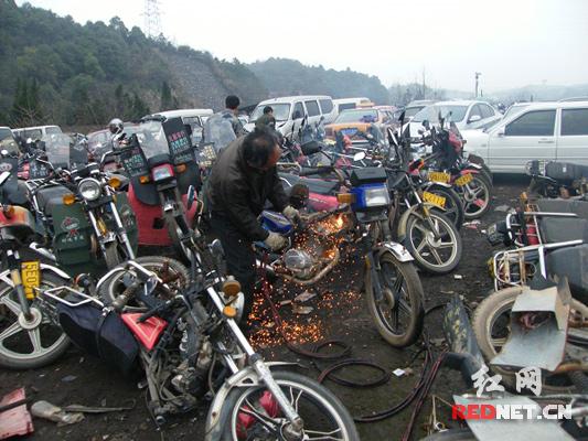 株洲荷塘交警集中销毁685辆报废摩托车(图)