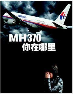 马航MH370航班失联 王力宏:那班飞机我常搭_