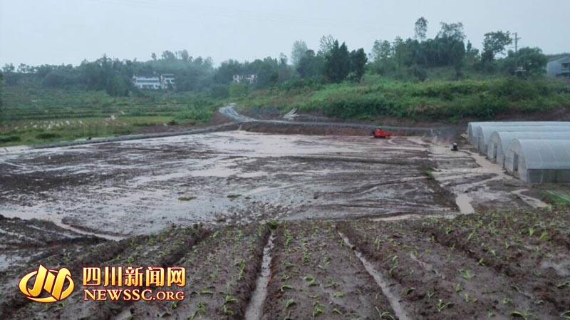 洪水肆虐后的农场。