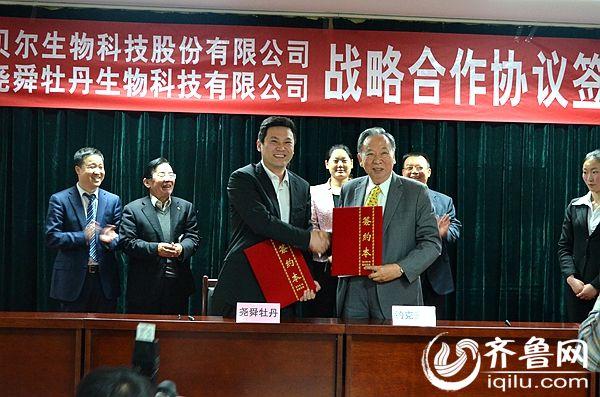 菏泽尧舜牡丹生物科技有限公司与台湾约克贝尔生物科技股份有限公司达成牡丹开发战略合作协议。(资料图)