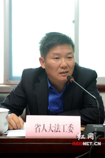 """湖南省人大常委会法工委副主任戴少一建议,国家应该尽快制定一部综合性的统领信息化发展的""""网络宪法""""。"""
