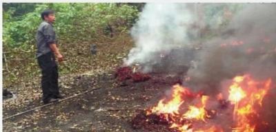 /湘潭两人露天焚烧工业废物被刑拘