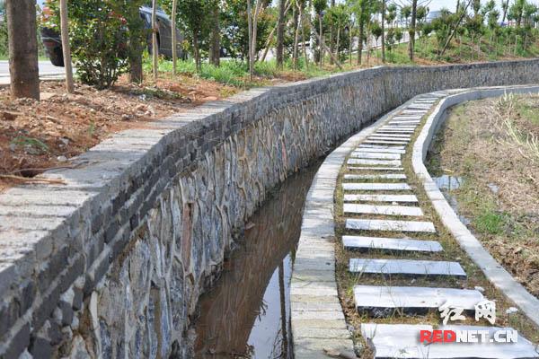 安仁县稻田公园对6条道路进行了硬化,绿化和亮化工程,兴修水渠1.
