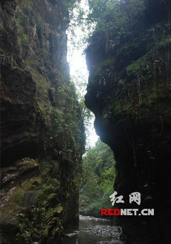 都庞岭国家级自然保护区
