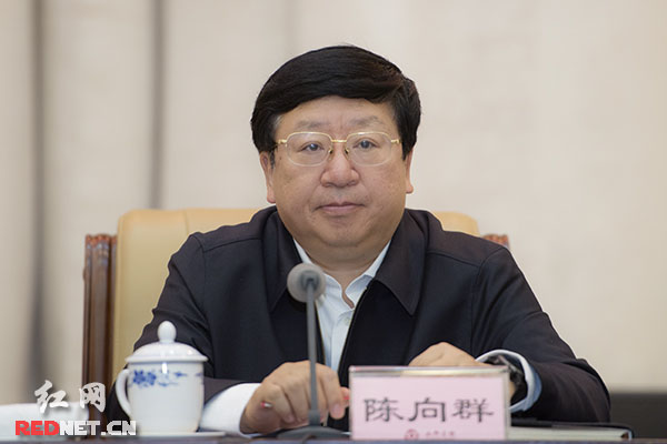 湖南省委常委、省政府党组副书记陈向群讲话。